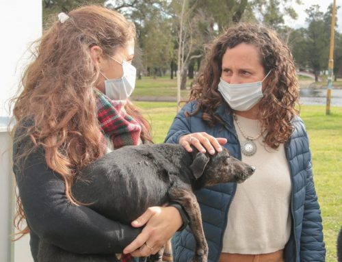 """Laura Mondino: """"La salud animal es una política pública en la ciudad"""""""